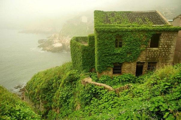 В Китае природа поглотила деревню